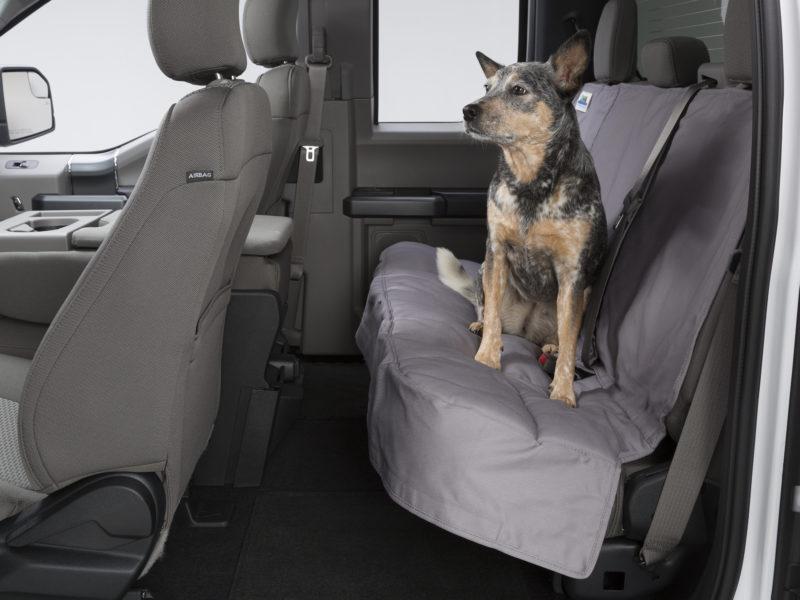 Custom Rear Seat Protectors